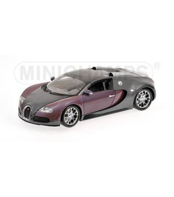 BUGATTI VEYRON GRAND SPORT - 2010 - GREY METALLIC & PURPLE METALLIC