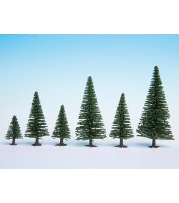 Елхови дървета, 10 бр., 5 - 14 cm