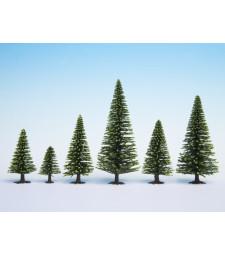 Смърчови дървета, високи, 10 бр., 16 cm
