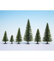 Смърчови дървета, 5 бр., 5 - 9 cm