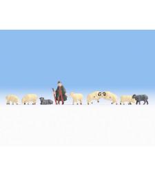 Овчар и стадо