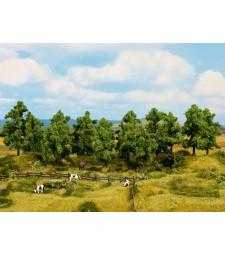 Широколистни дървета (H0, TT) - 16 броя, височина 10 - 14 cm