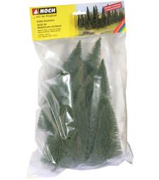 Елхови дървета - 10 бр. (17 - 20 cm, голям размер)