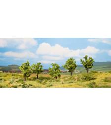 Плодово дърво, зелено - височина 8 см, 5 броя - TREE CUBE