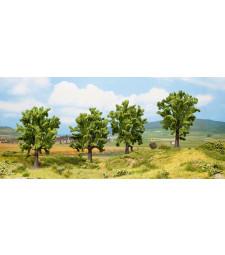 Бреза - височина 13 см, 4 броя - TREE CUBE