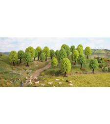 Широколистни дървета - 5 - 9 см високи, 15 броя - TREE CUBE