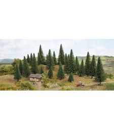 Елхови дървета - 5 - 9 см височина, 15 броя - TREE CUBE