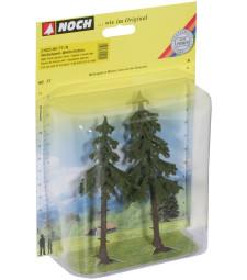 Смърчови дървета с дълги стебла - 2 бр. 12,5 и 14 cm