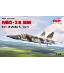 1:48 MiG-25 BM, Soviet Strike Aircraft