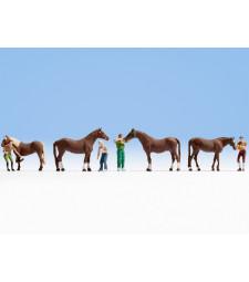 Грижа за конете