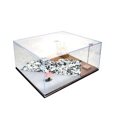 Дисплей кутия за диорама - 316 x 276 x 136 mm