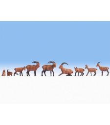 Алпийски животни