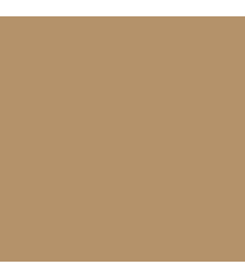 C-321 Mr. Color (10 ml) Light Brown